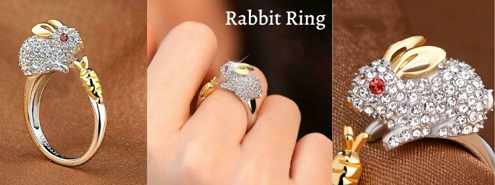 rabbit-ring